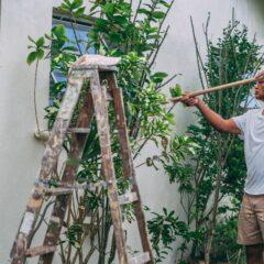 Mand ordner sin have med stang